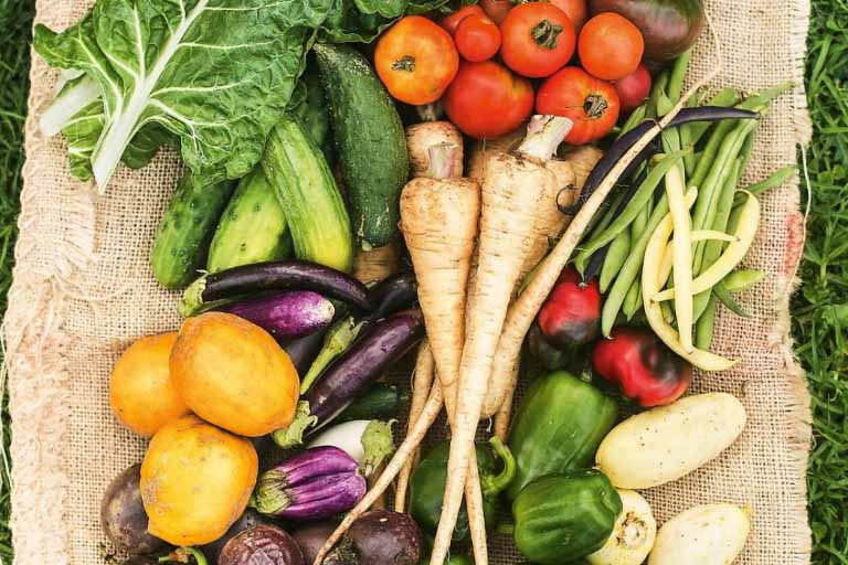 The Easiest Vegetables to Grow