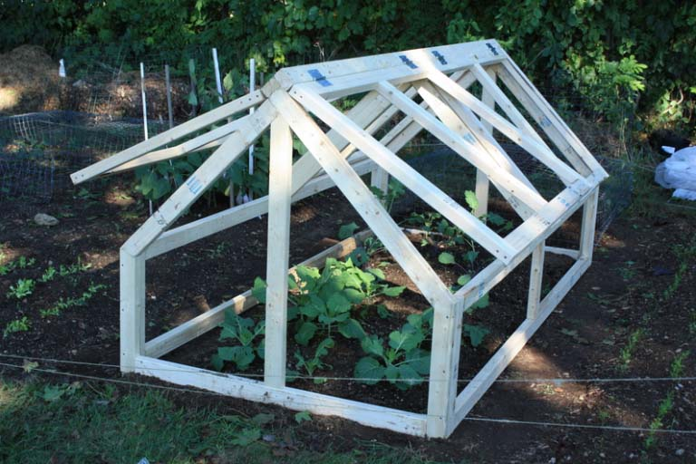 Things to Consider When Purchasing a Mini Greenhouse