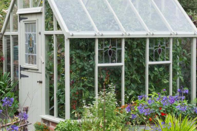 What Are The Benefits of Using a Mini Greenhouse