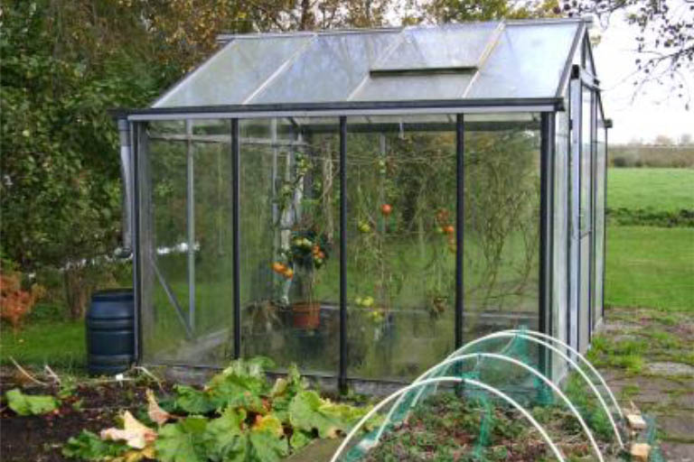 What Exactly Is a Mini Greenhouse