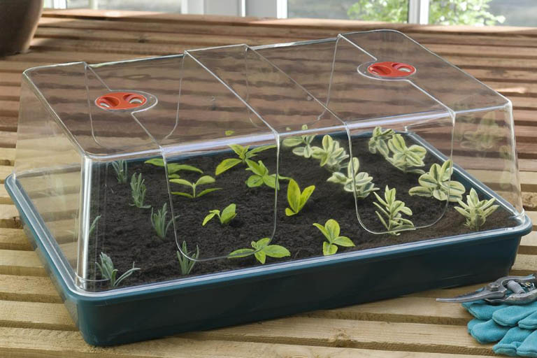 Add-ons for Your Propagator or Seed Tray