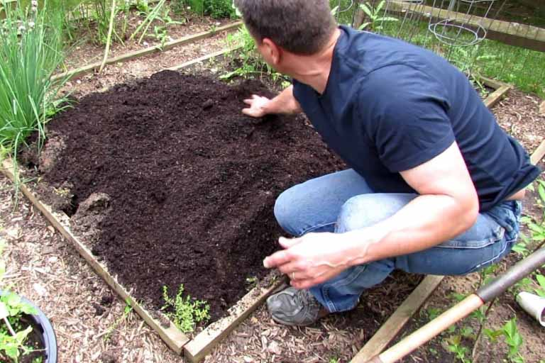 Dig and Study the Soil