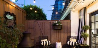gardening 101: a beautiful set up of plants on a patio garden