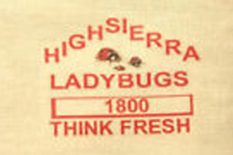 High Sierra Ladybugs