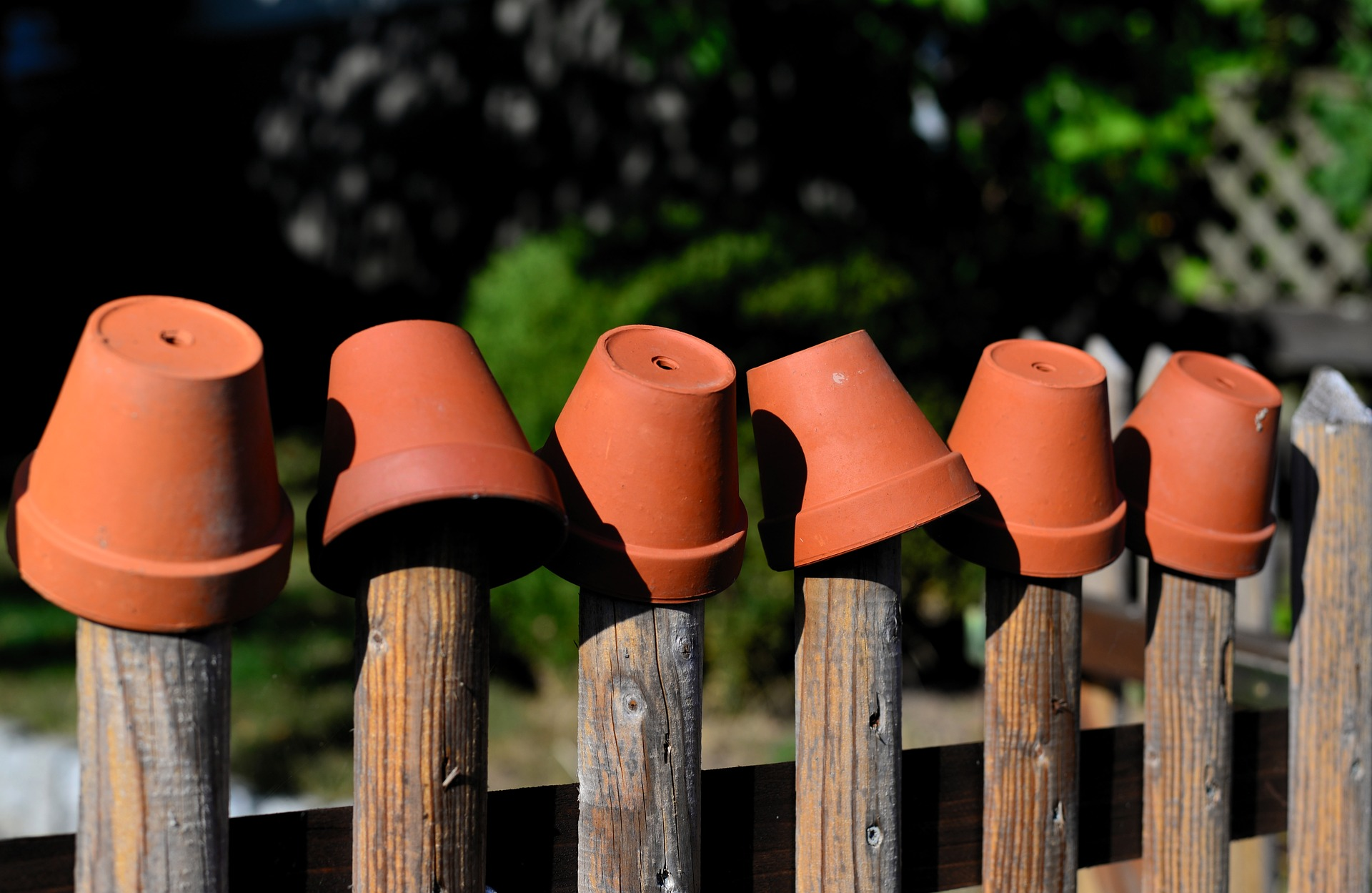 garden pots on a fence