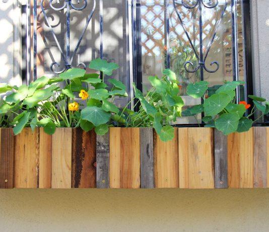 window planter boxes