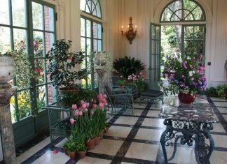 beautiful flower garden inside an apartment using indoor plant stands