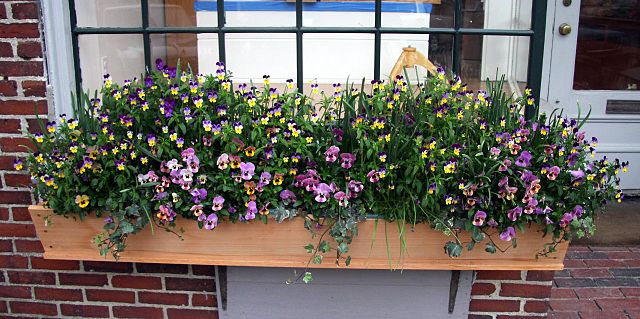 window planter box