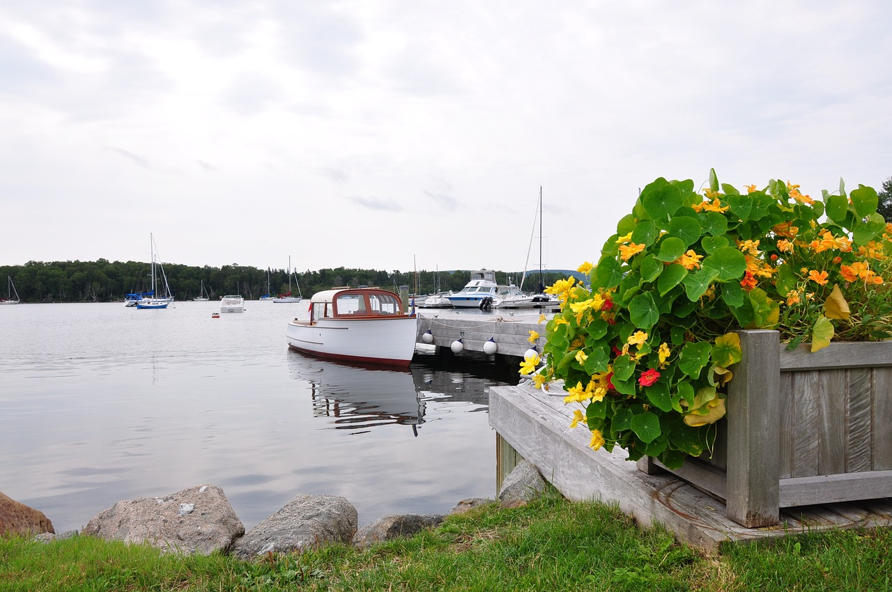 flower planter at a nearby lake