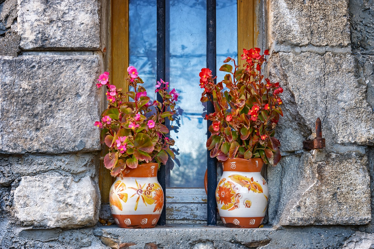 two vase flowers by the window