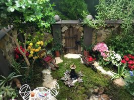 basic miniature garden