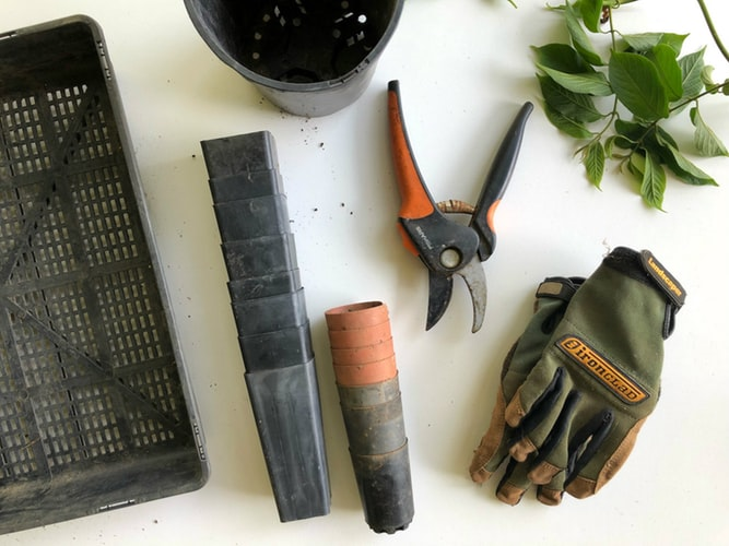 Gardening tools including gloves