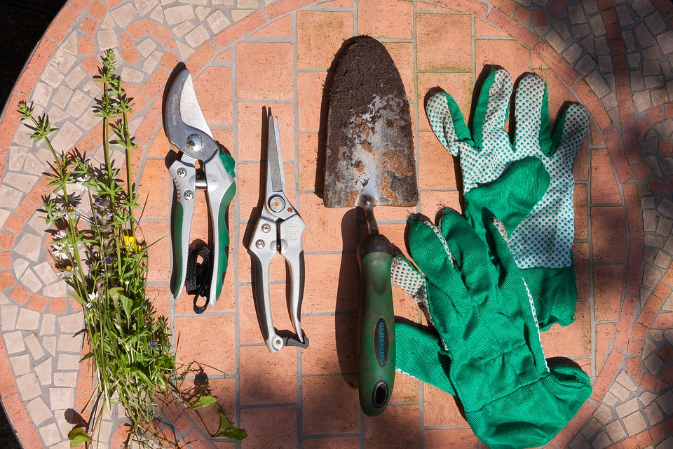 Green gardening gloves