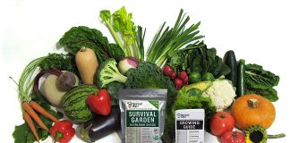 Survival Garden 15,000 Heirloom Vegetable Non GMO Seeds