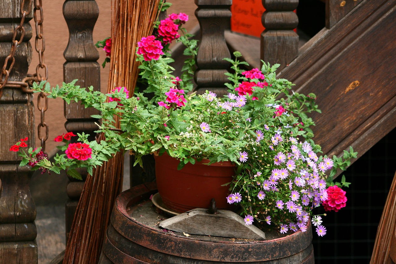 self watering planters with red flowers