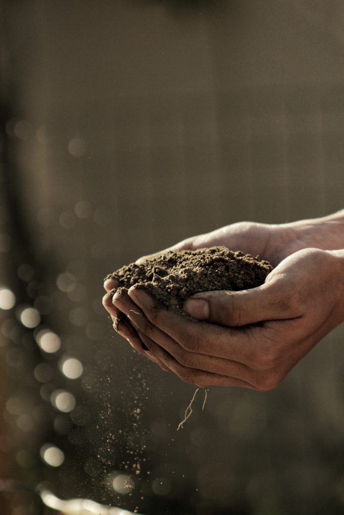 a person holding loose soil