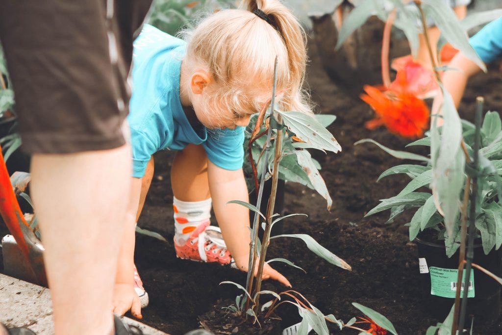 Girl helping garden