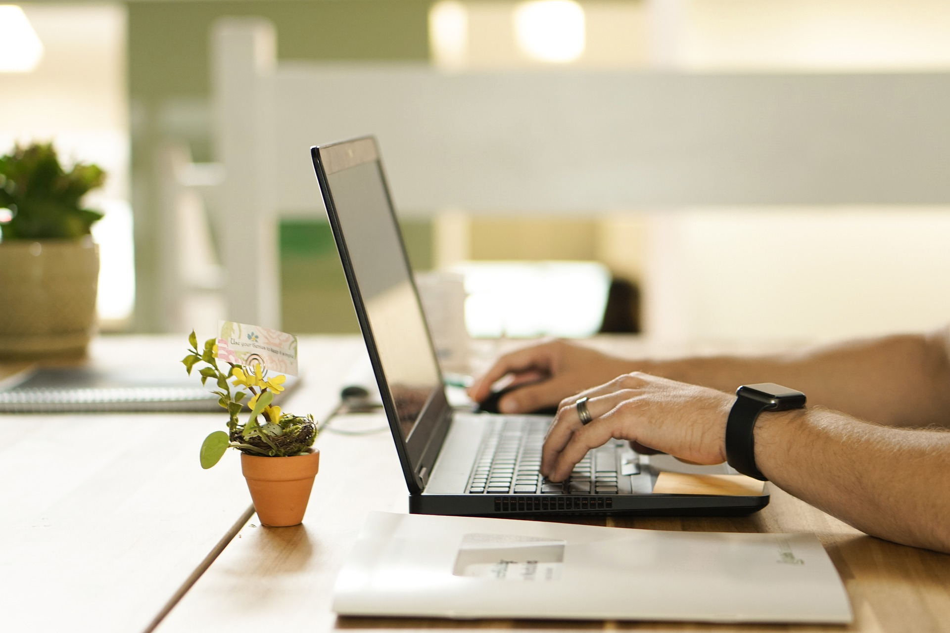 A person types on a laptop with a flower nearby while wondering is buying plants or cuttings online safe?